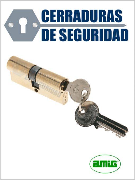Bombin_Cilindro-marca-AMIG-modelo-9600_cerradurasdeseguridad