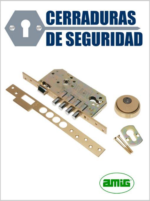 Cerradura-de-embutir-modelo-100-101_cerradurasdeseguridad
