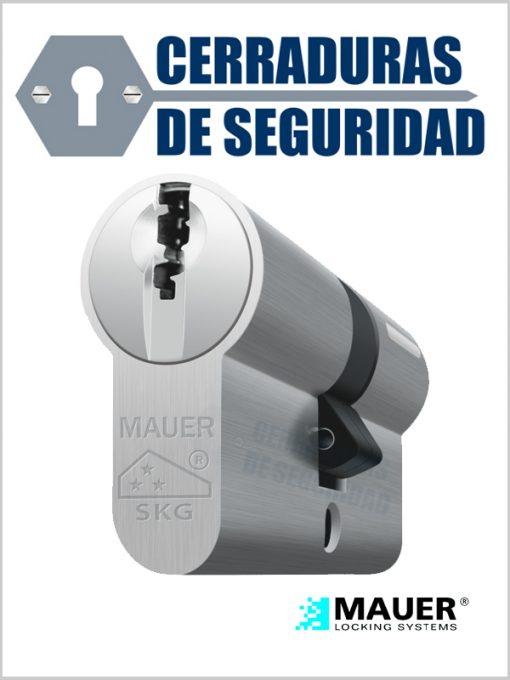 Cilindro-doble-Multipunto-Mauer-Modelo-dt1_cerradurasdeseguridad