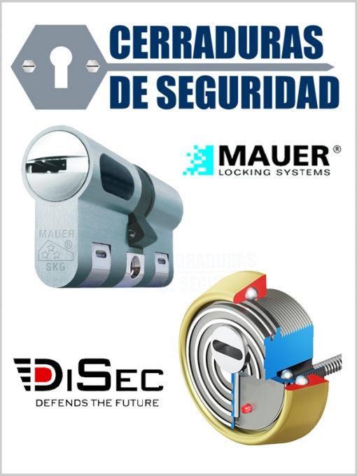 Kit-Escudo-Protector-Blindado-Alta-Seguridad-con-Alarma-DISEC-BD280LED-ROK-dB+SIM-+-Bombin-MAUER-NW5_cerradurasdeseguridad
